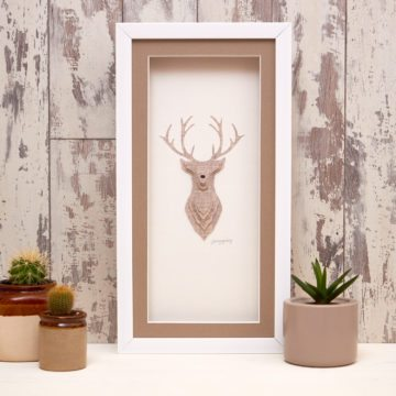 Stag Animal Collection