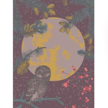 Mr-Owl-Print-Flat