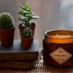 Large Signature - Lime, Basil & Mandarin Candle