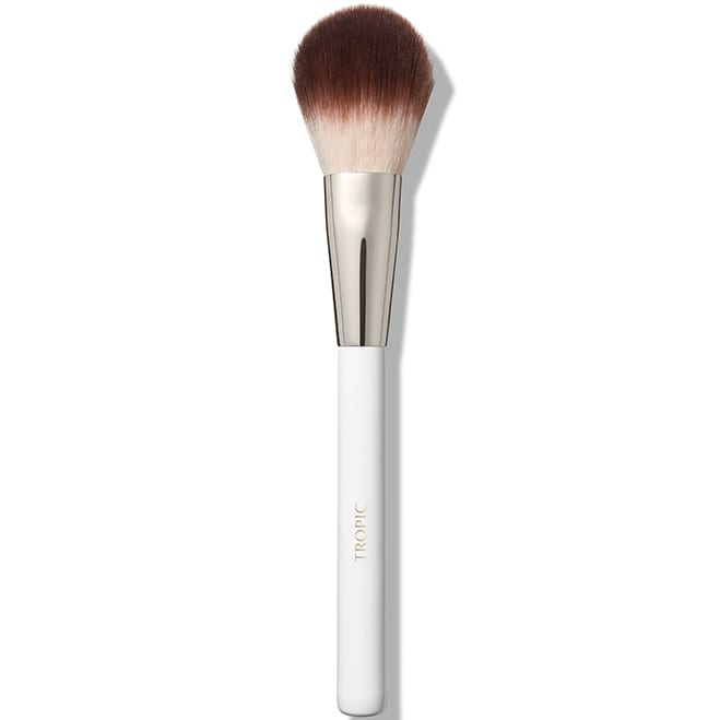 Bamboo Angled Brush