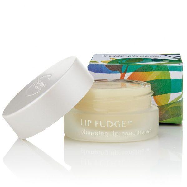 Lip Fudge Plumping Lip Conditioner Clear