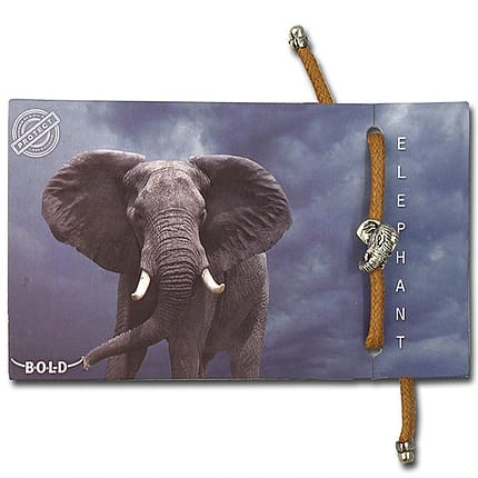 B-O-L-D Elephant Bracelet