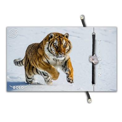 B-O-L-D Tiger Bracelet