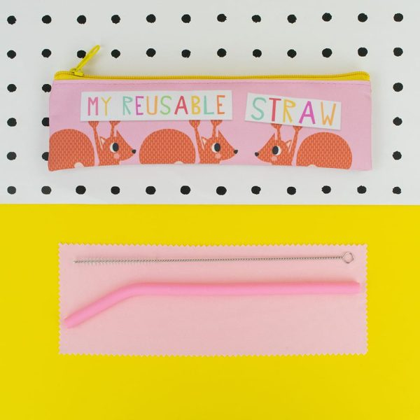'My Reusable Straw' Straw Set