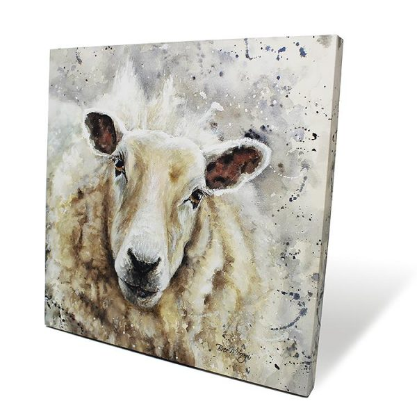 Sheila Box Canvas