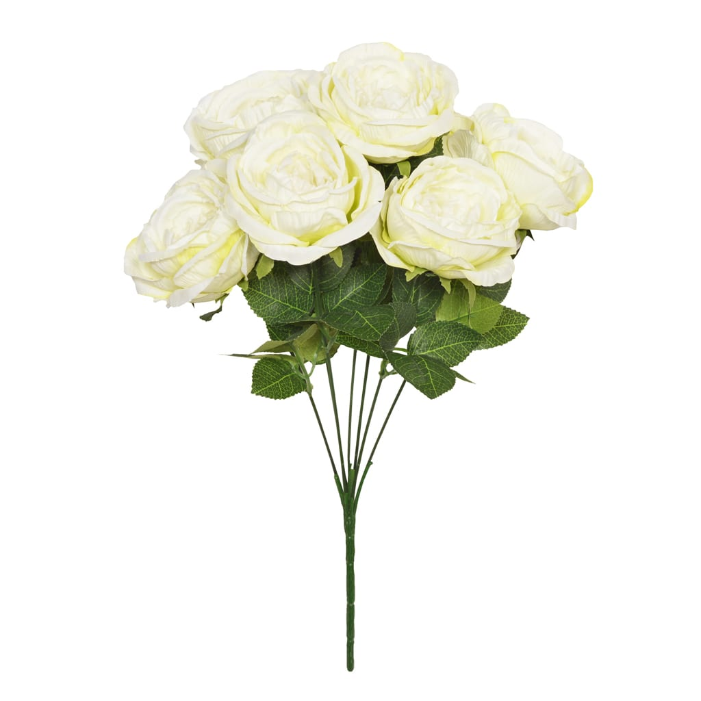 48cm Cream Garden Rose