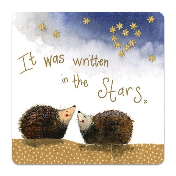 Stargazers Hedgehog Coaster