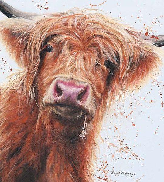 Betsy Canvas Cutie