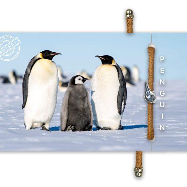 B-O-L-D Penguin Bracelet