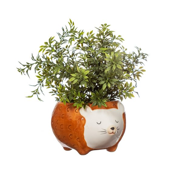 Hettie Hedgehog Planter