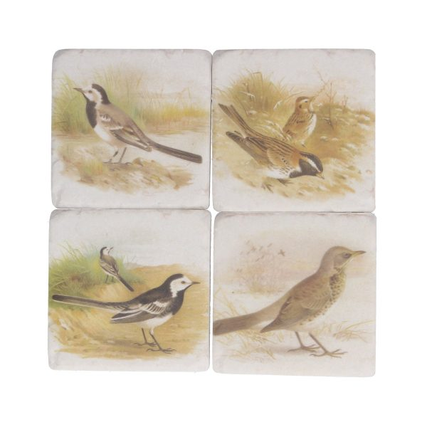 Soft Tone Bird Set of 4 Coaster