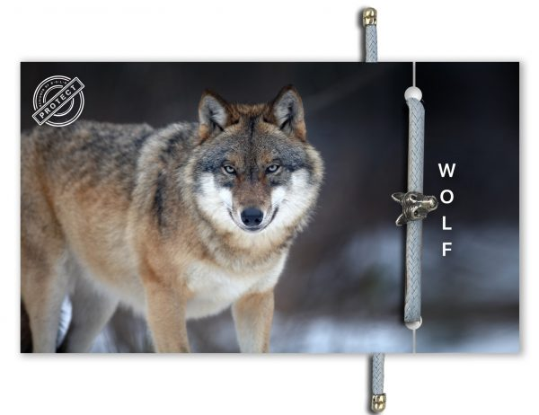B-O-L-D Wolf Bracelet